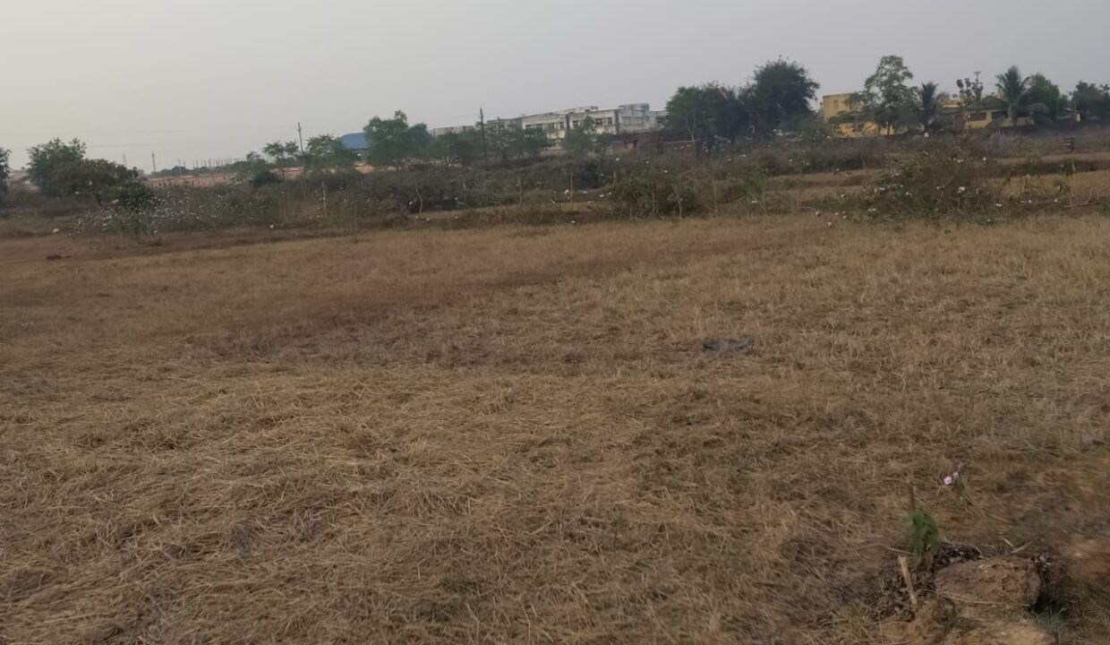 plot for sale at puri