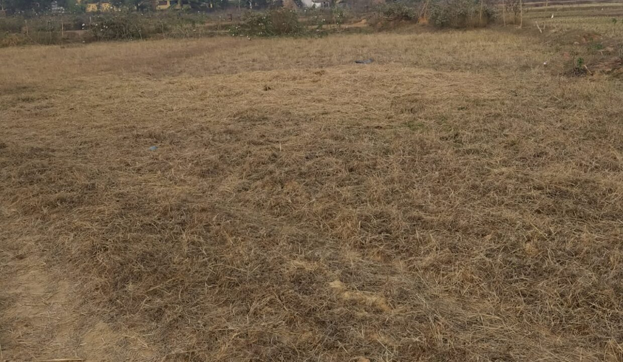 plot for sale at puri2