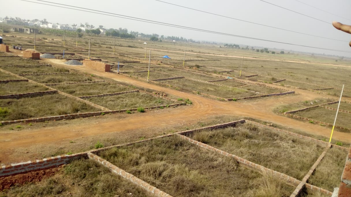 residental plot for sale in dadhibabanpur (9)